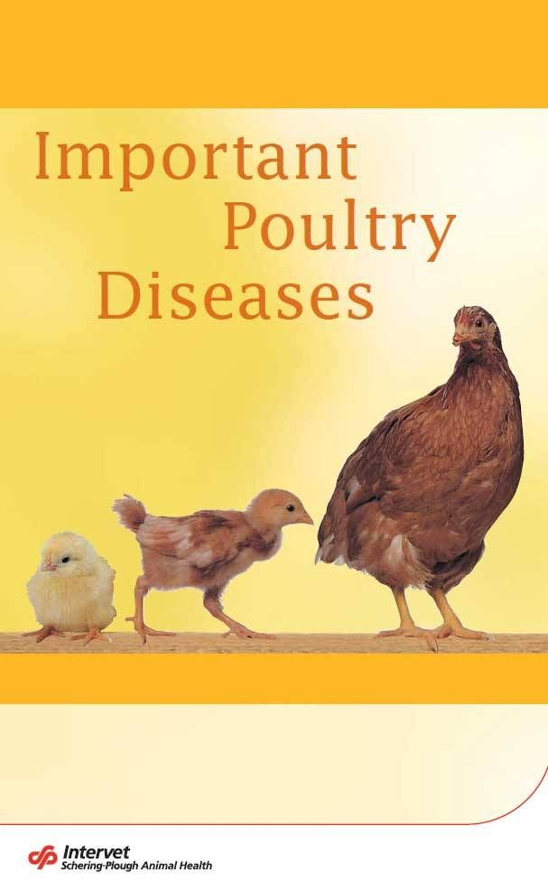 Important Poultry Diseases PDF Book Free Download