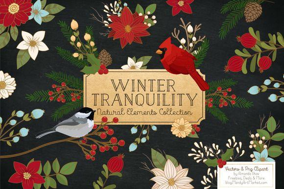 Christmas Birds & Flowers Vectors by Amanda Ilkov on Creative Market
