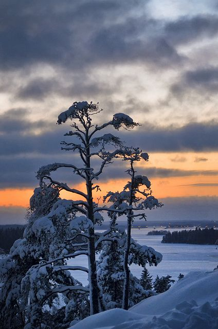 Snowy Sunset - Finland