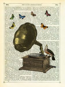 Gramophone, Bird and Butterflies Marion McConaghie