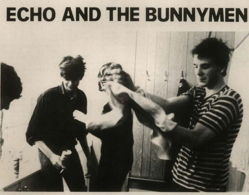 Echo and the Bunnymen, Spex Magazine, 1981