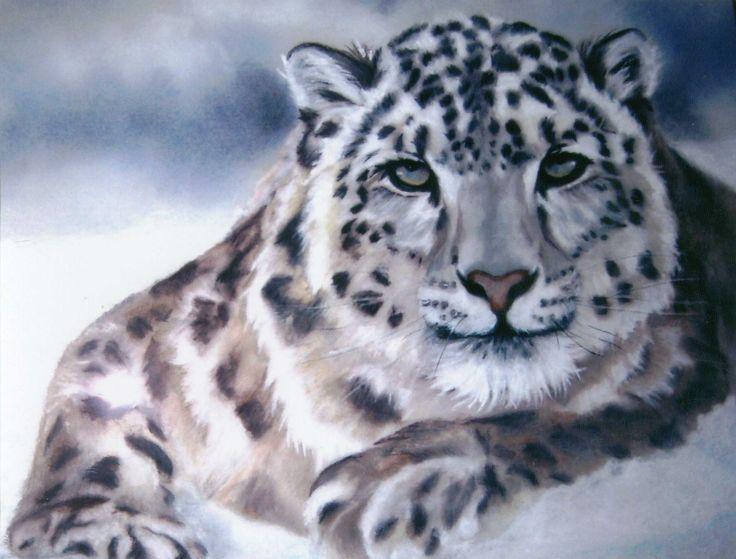 30 Best Snow Lepords Images On Pinterest