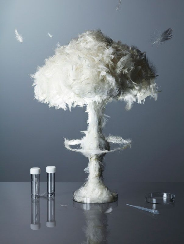 mushroom-cloud-made-from-feathers-kyle-bean