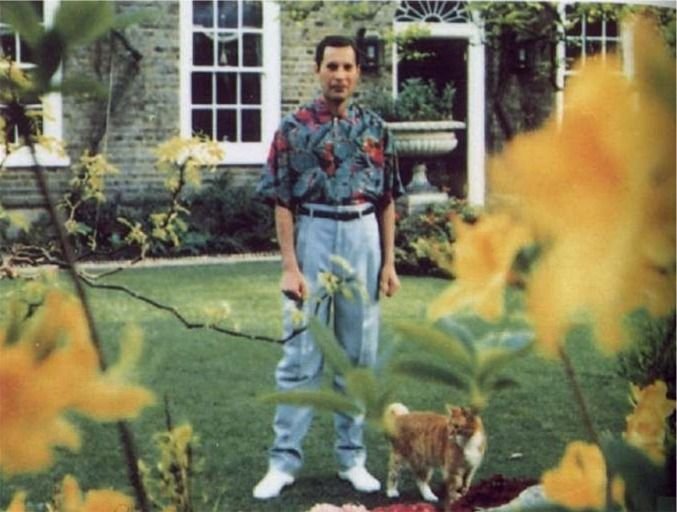Freddie Mercury, leader singer for Queen, can be seen in this photo at his home Garden Lodge in London. This was taken in the spring of 1991 and thought to be the last known photo of Freddie Mercury.