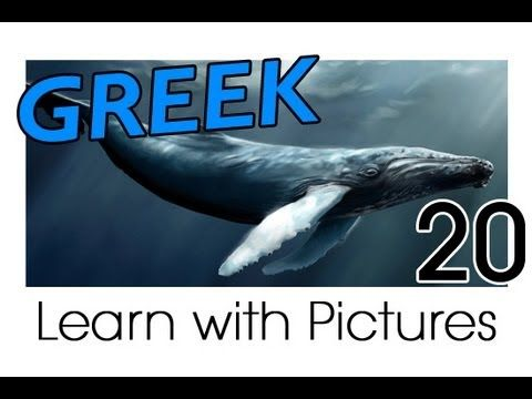 Learn Greek with Pictures -- Marine Animals