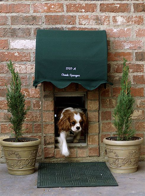 Thought there was no such thing as a trendy dog door? Think again; you can  frame the new dog door with brick to achieve a pet-pleasing portal that fits in seamlessly with your exposed brick home.