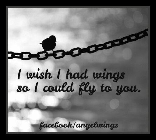 Facebook/angelwings