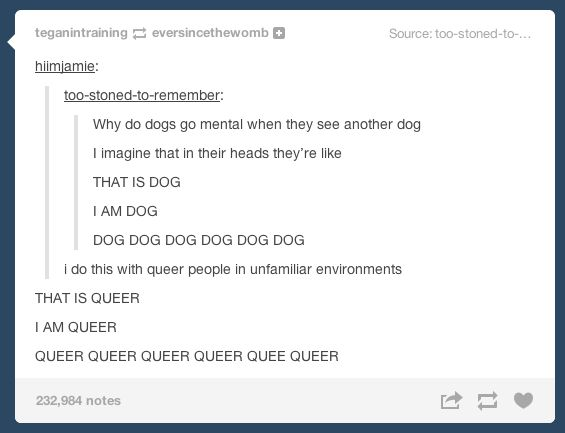 Spotting another queer person in an unfamiliar environment is magical. | 22 Important Lessons From Tumblr About Being Gay