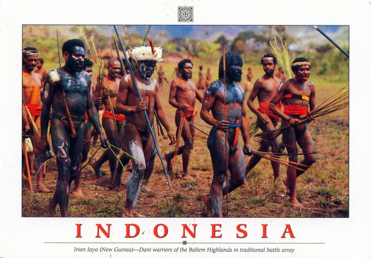 INDONESIA (New Guinea) - Dani Tribe in Baliem Valley (3)
