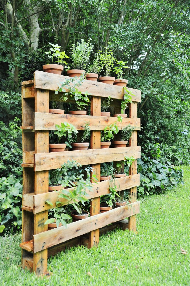 Huerta vertical de especias, hecha a partir de pallets