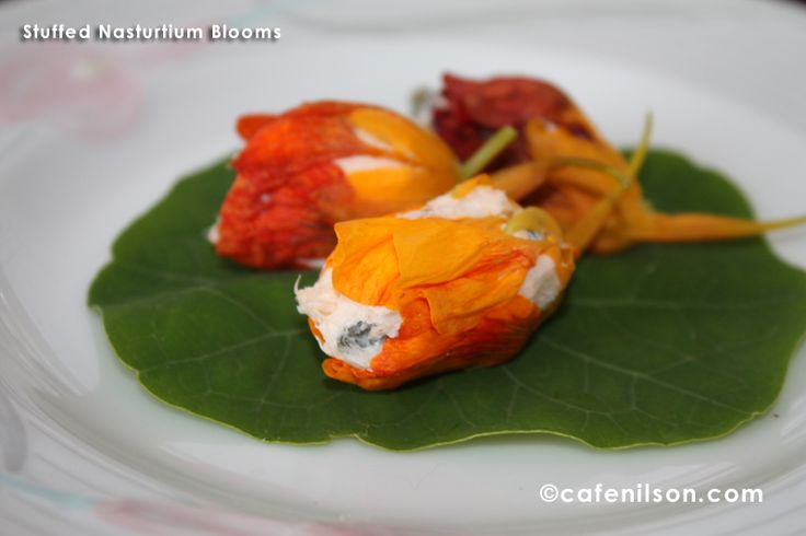 Stuffed nasturtium flowers. Use low fat cream cheese to make it healthier. Combine fresh herbs, whipped cream cheese, minced garlic, chopped salmon if you like.  Stuff and serve. Beautiful and always impressive.