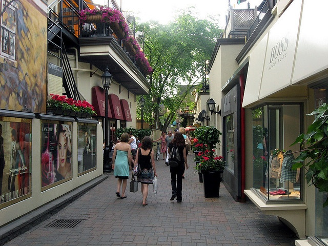 Yorkville Area - perhaps the most expensive and pretentious area in Toronto. It's still the best place to spot exotic cars, well dressed people and animals, and some of the bars are definitely Toronto landmarks.