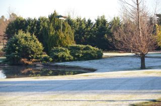 Our Mini Golf course on a frosty winter's morning