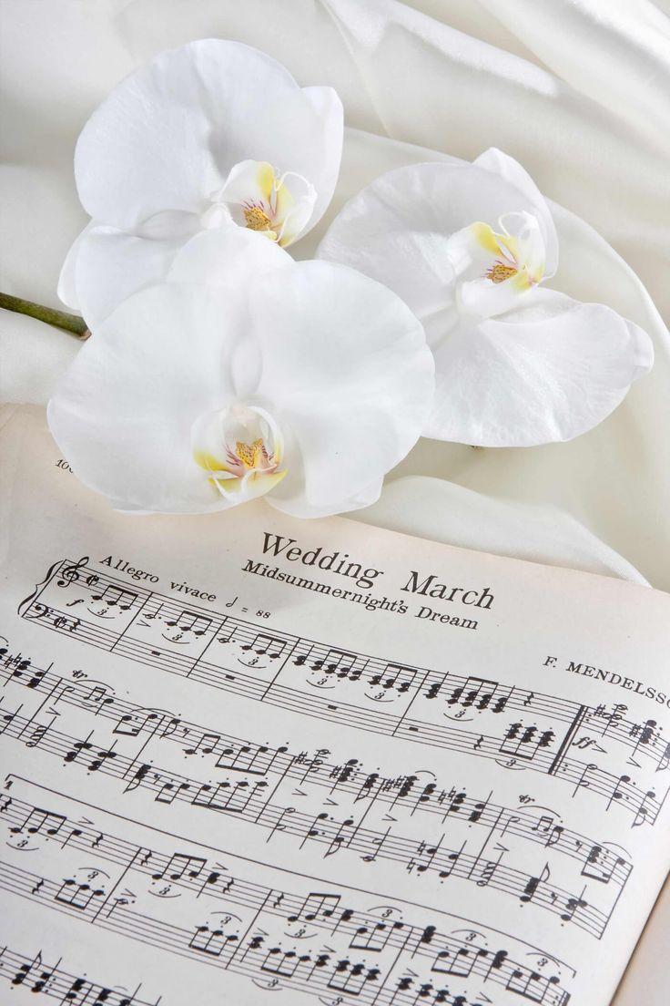Musik und Lieder fürs Standesamt