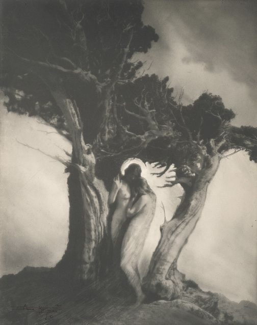 Anne Brigman. The Heart of the Storm 1902