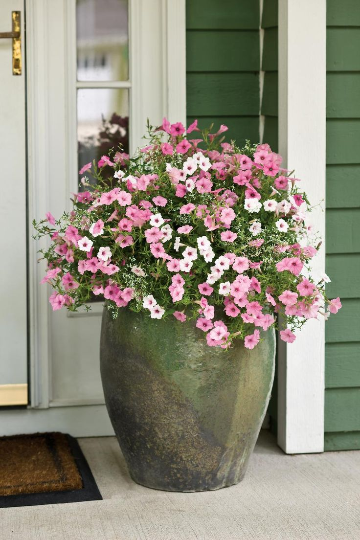 Pick out a large glazed pot. Stack unused plastic pots in the base to prop your hanging basket of flowers. Remove the wires of the basket.