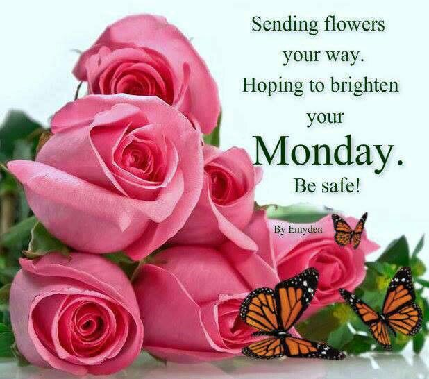 Sending flowers your way. hoping to brighten your Monday! Be safe.