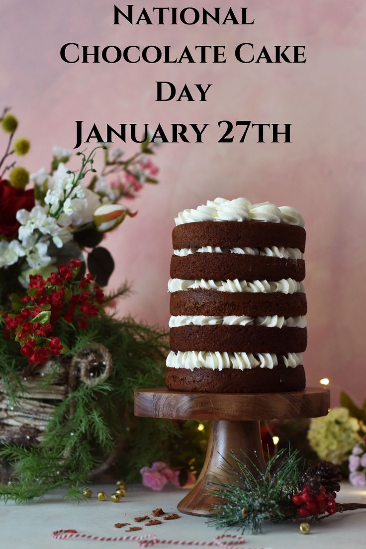 January 27th is National Chocolate Cake Day. Check out all