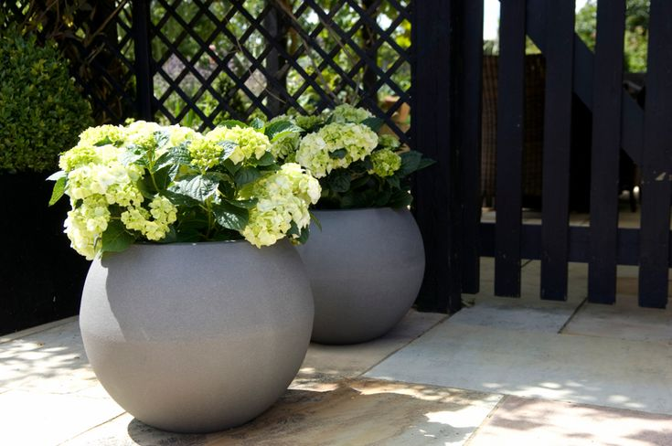 Capi Europe staat bekend om zijn grote, luxe lichtgewicht potten voor in de tuin.