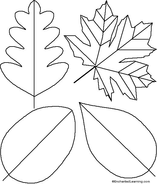 Google Image Result for http://www.enchantedlearning.com/crafts/leaf/leaftemplate.GIF