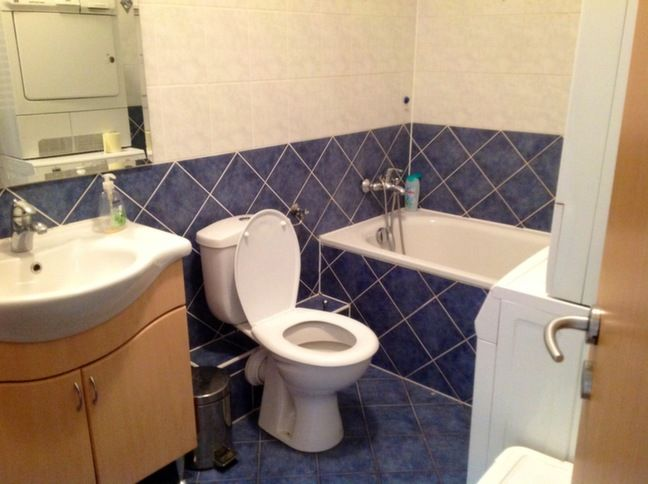 master bathroom (toilet will be equipped with bidet function and washing machine + dryer can be moved to guest bathroom)