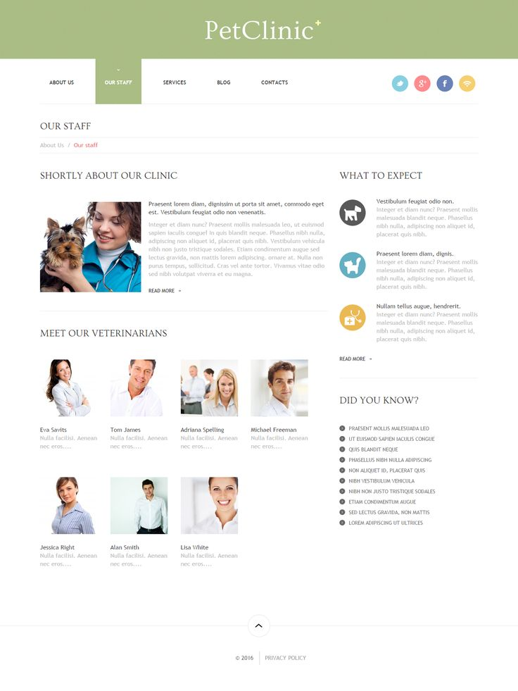 Pets Clinic Responsive WordPress Theme ✔ Website 47407. Buy Pets Clinic WordPress Theme ✔ Animals & Pets, Website template is best for color, staff, feed, flea, veterinary, cleanup.