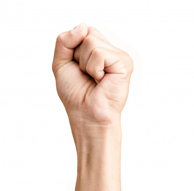 Man Hand Clenched A Fist Isolated On White Background Hand Fist Hands Male Hands