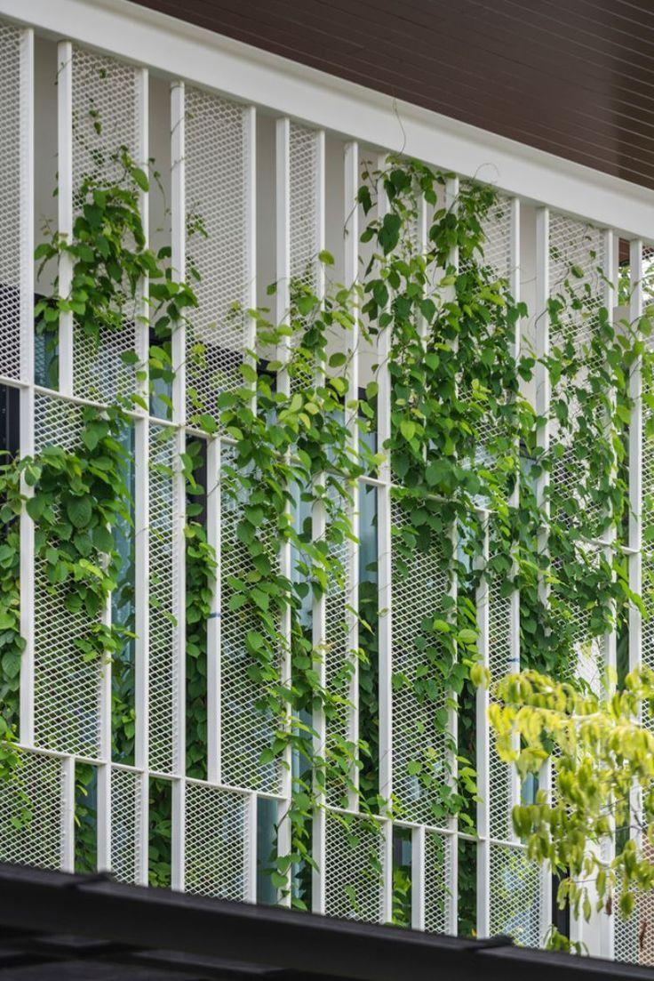 Begrunte Fassade Designer Haus Moderne Architektur Gitter