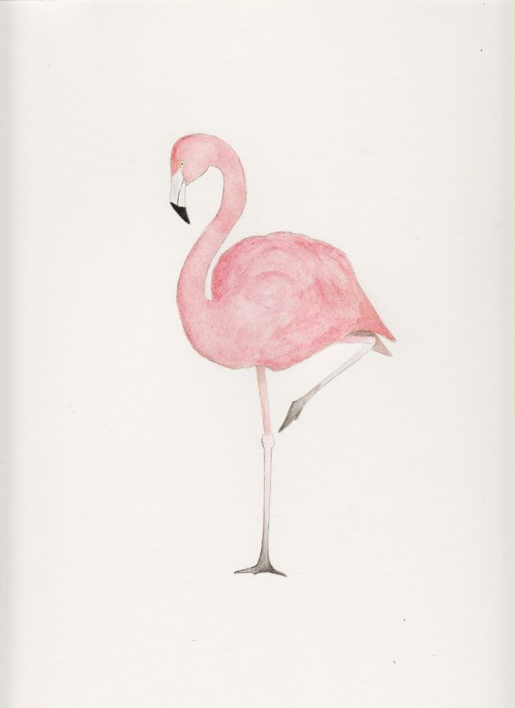 Pink Flamingo Bird - 9 x 12 - Original Watercolor Painting