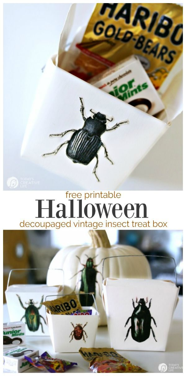 DIY Halloween Treat Box | Trick or Treat Candy Box with a decoupaged Mod Podge Free Printable | Easy Halloween Craft Ideas from TodaysCreativeLife.com