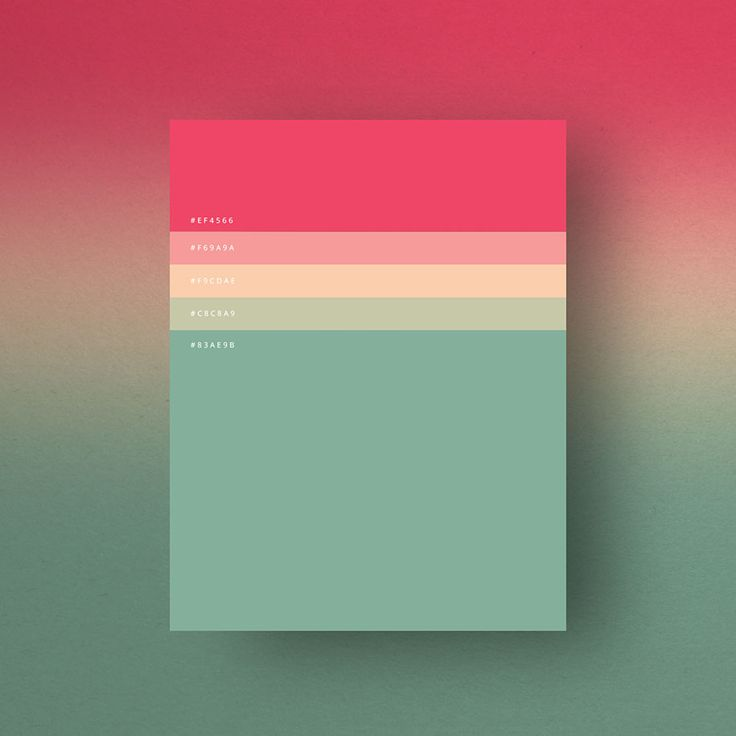 most-popular-color-palettes-of-2015-dumma-branding-8