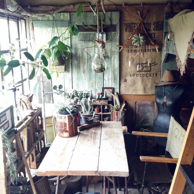 edenさんの、グリーンと雑貨,ネイティブ,板壁,DIY,模様替え,部屋全体,のお部屋写真