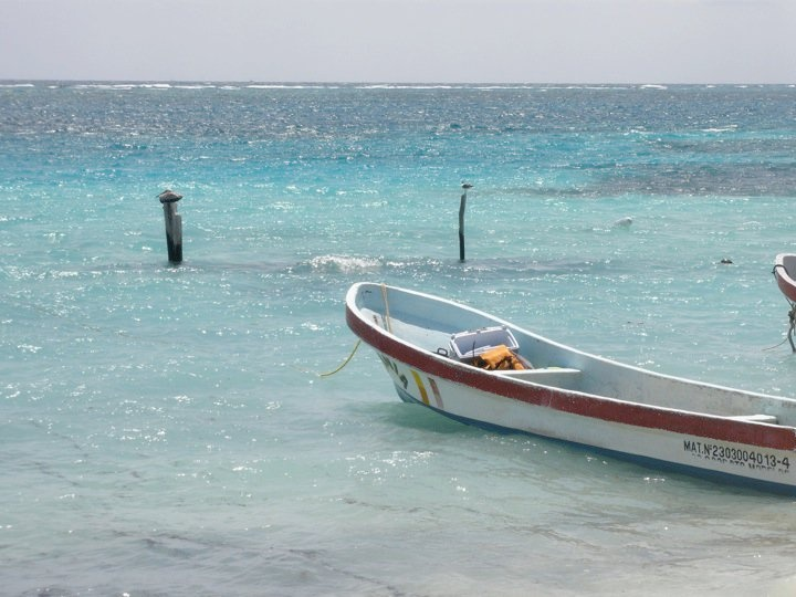 28 best images about puerto morelos on pinterest cars for Puerto morelos fishing