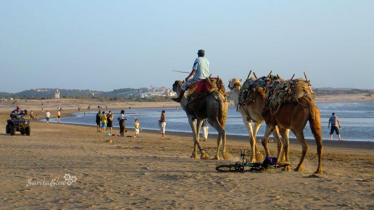 Essaouira - Marruecos #viajes #travel #backpaking #naturaleza #green #saritablue #autor @saritabluephotocinema