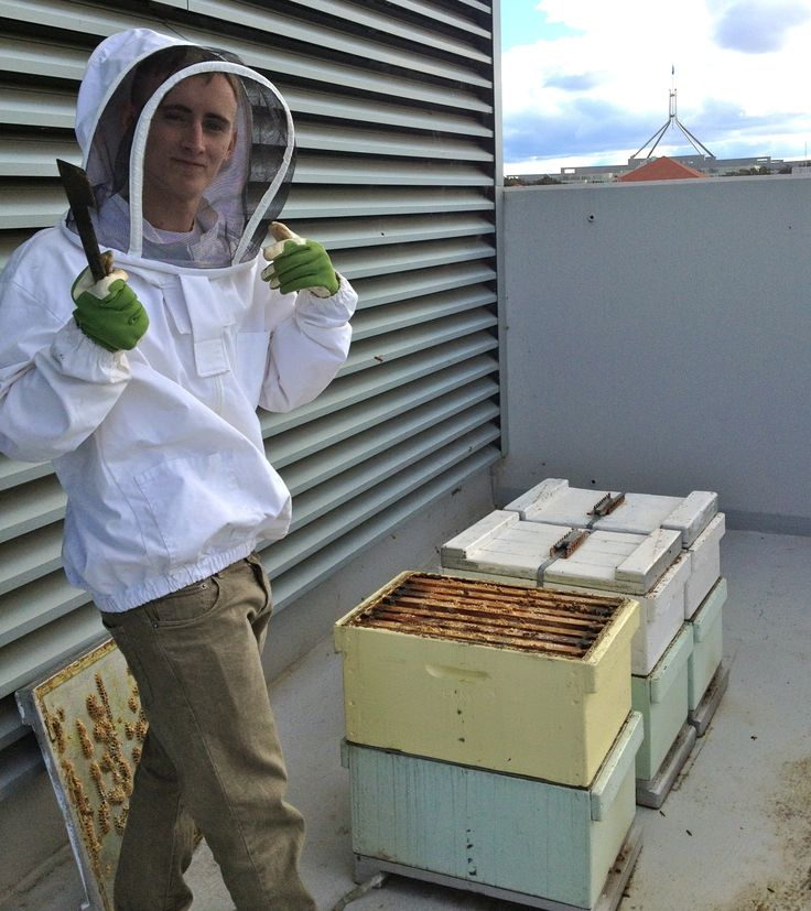 Mitchell checking the rooftop hives at the Hotel Realm