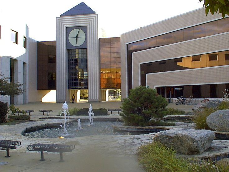 Does Western Michigan University have a good Psych program? Is it good enough to be