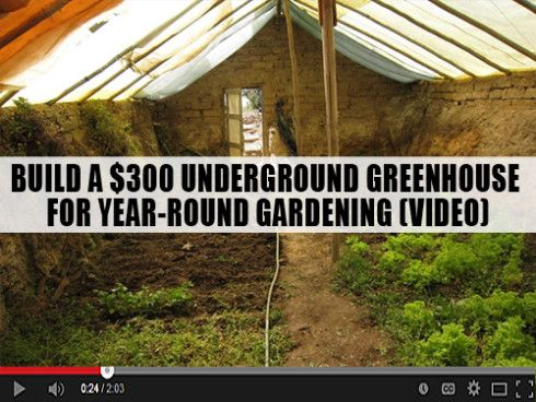 How do you feed a bunch of people? On your own, of course! / #DIY, an underground #greenhouse garden for $300.