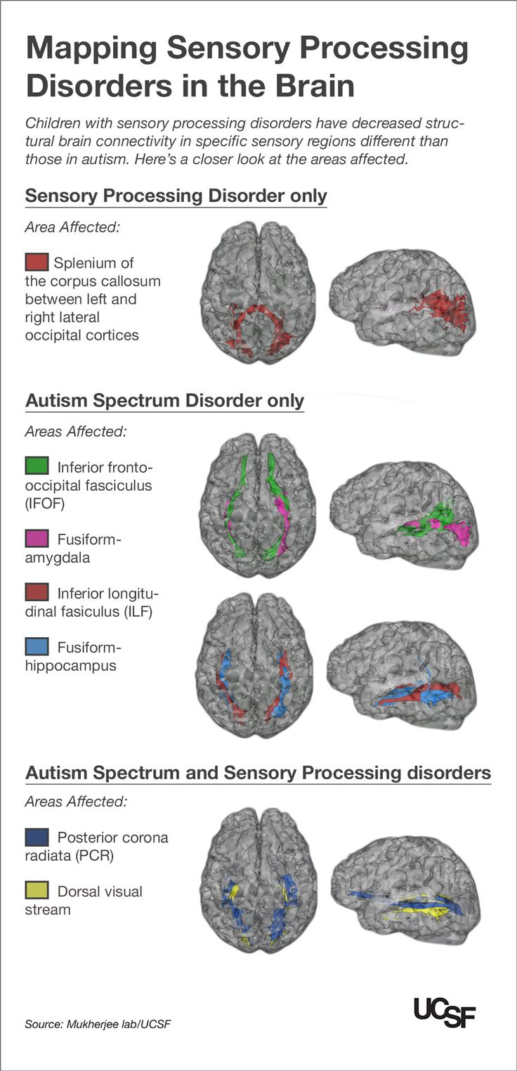 Kids with Autism and Sensory Processing Disorders Show Brain Wiring Differences | ucsf.edu