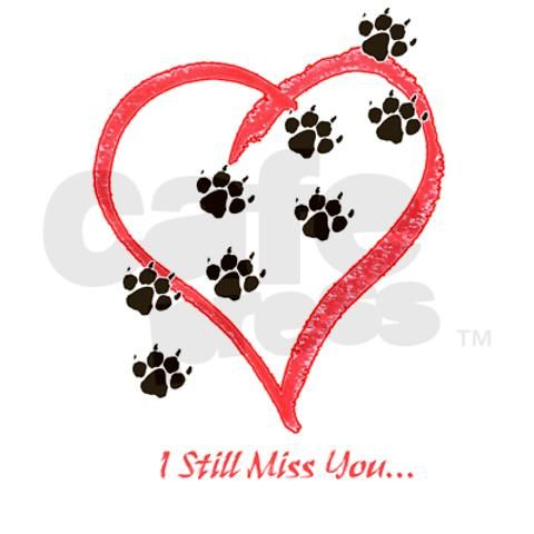 This one is for AJ---Miss you baby.  I LOVE Tucker, but I still miss you.....