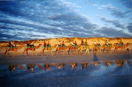 Broome, #Australia:                                     Cable Beach Camel rides