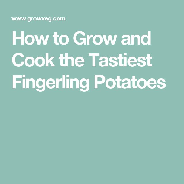 how to cook fingerling potatoes on the stove