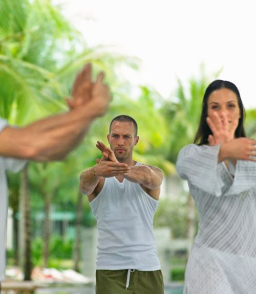 Tai Chi and Chi-Gong (Qigong) Exercises that reduce Fibromyalgia Pain and Fatigue. Must try.