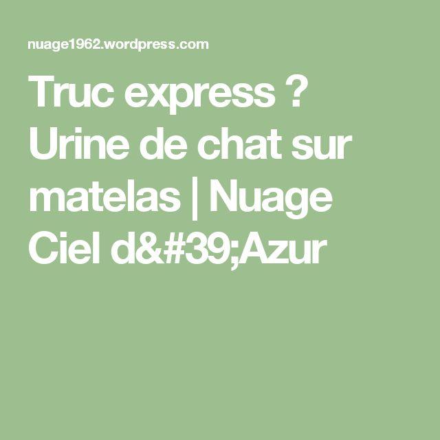 Pipi De Chat Sur Matelas