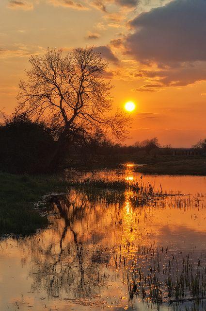 Sunset plain                                                                                                                                                     More