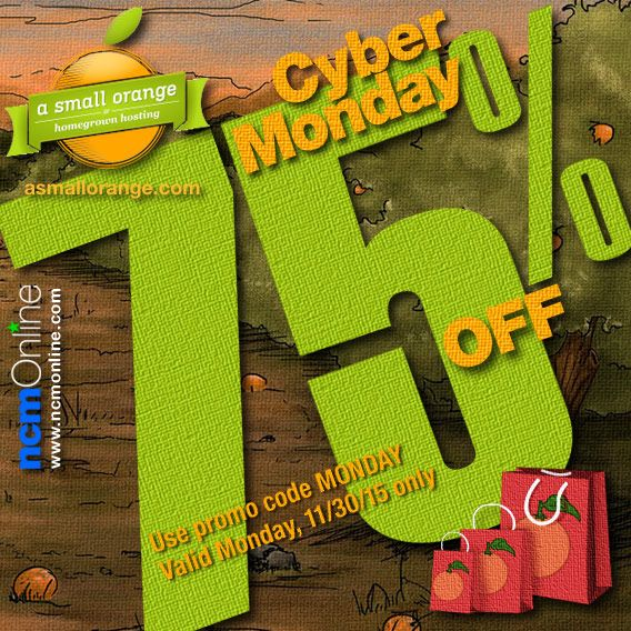 For one day only — Cyber Monday 2015 — you can purchase any of A Small Orange's web hosting plans at an enormous 75% discount.