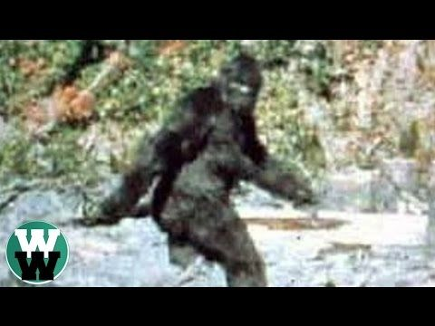 20 Most Convincing Bigfoot Sightings of All Time - YouTube
