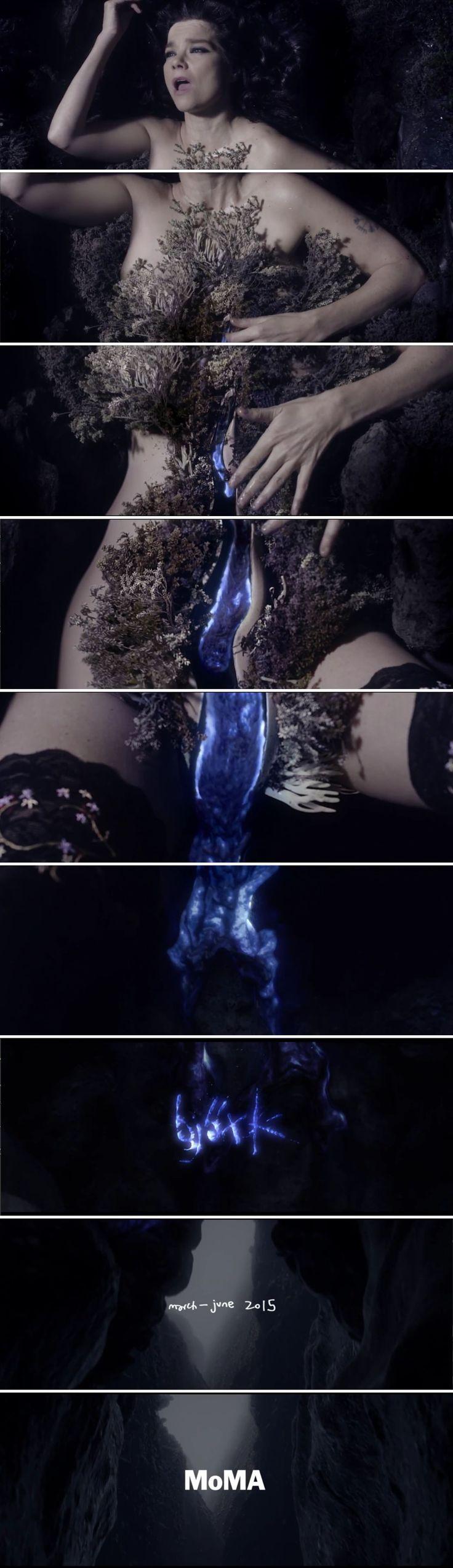 "Bjork's ""Black Lake"" Trailer from MOMA."