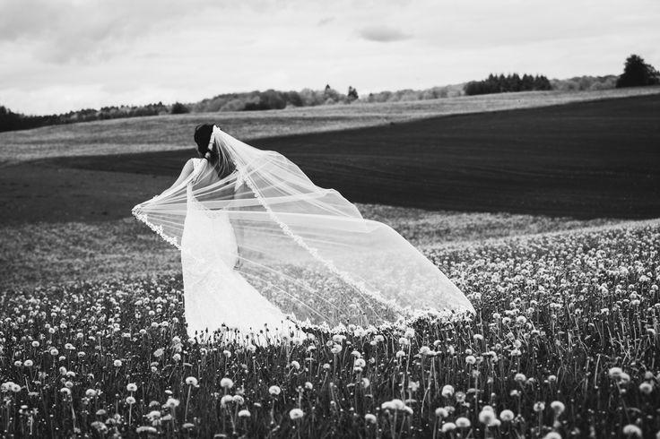 sluier-ardennen-fotograaf-wind-utrecht-bruiloft-voorbeeld-fotografie-