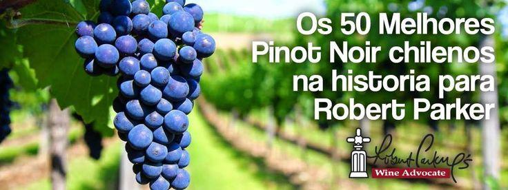 http://vinhoemprosa.com.br/2015/02/os-50-melhores-pinot-noir-chilenos-na-historia-para-robert-parker/