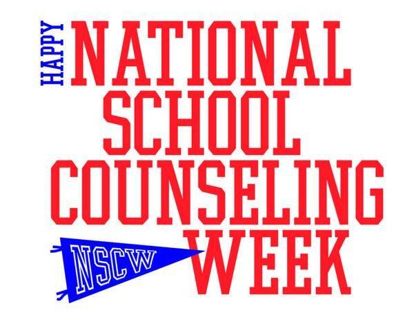It's here! Our week is here! It's National School Counseling Week! The week in which we do a little extra to advertise and highlight all that we do in our schools. Of course, I understand the irony...